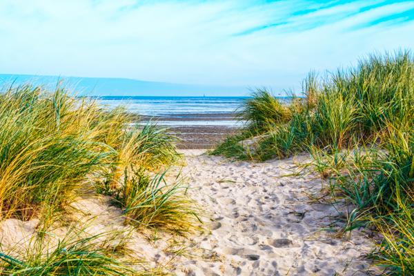 Dünen am Strand von Schillig an der Nordsee
