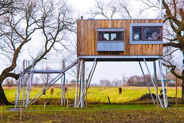 Baumhaus auz Stelzen auf einer Weide/ Tiny House